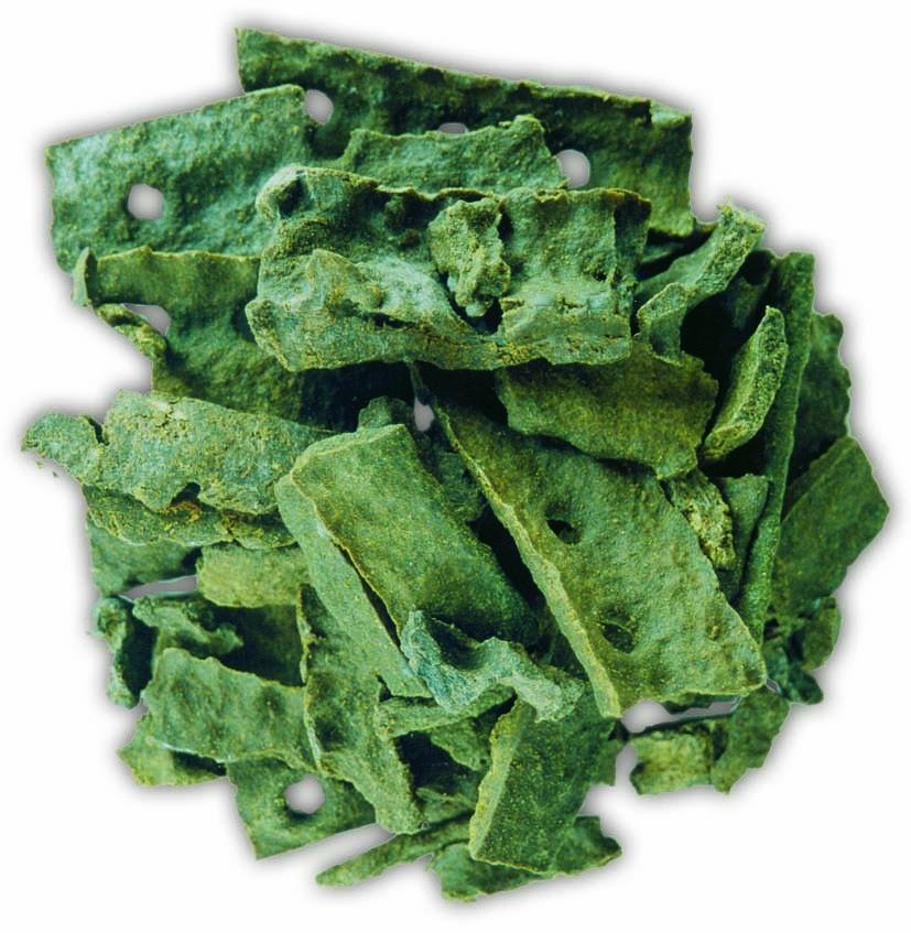 propolis verde uma das melhores do mundo